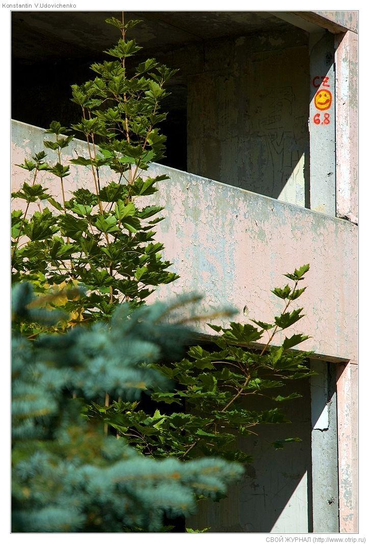 1164s_2.jpg - 2Бетонки-Бронницы (22.07.2009)