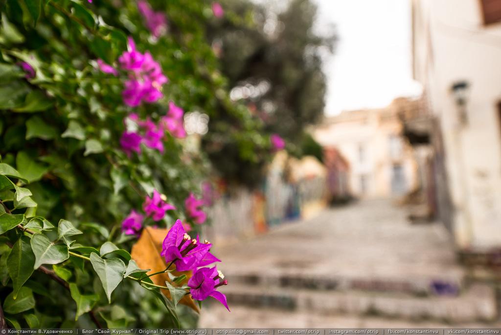 20141207_143_9574s.jpg - Греция. Афины. (07.12.2014)