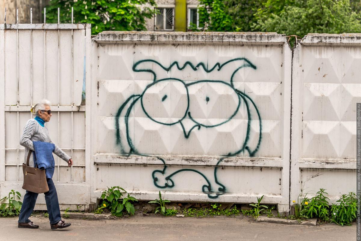img3808s.jpg - Коломенский кремль (15.05.2016)