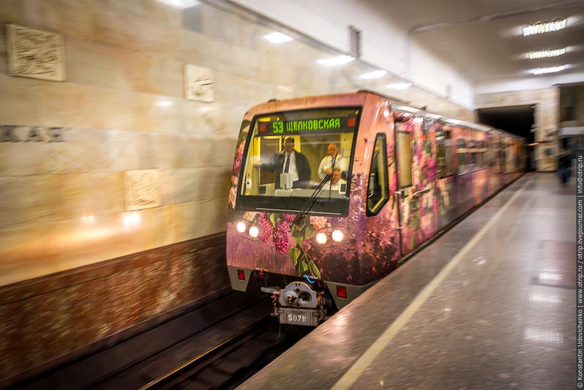 """img8902s.jpg - Поезд-галерея """"Акварель"""" в Московском метро (27.09.2016)"""