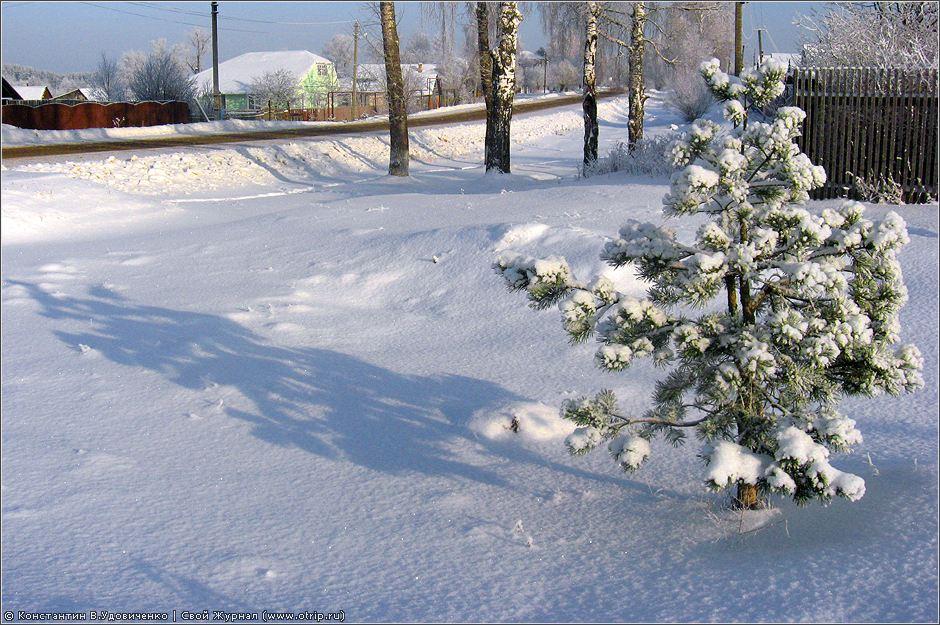0129s_2.jpg - Московская область, д.Пичурино (18.01.2010)