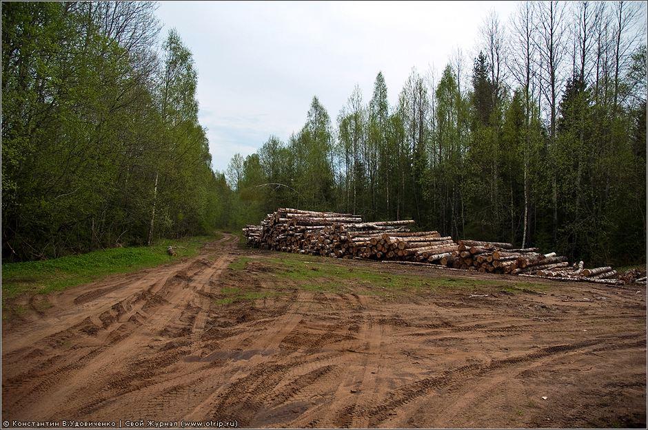 0279s_2.jpg - Новгородская область (10-15.05.2010)