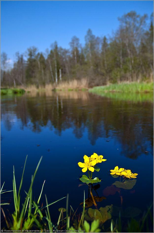 0544s_2.jpg - Новгородская область (10-15.05.2010)