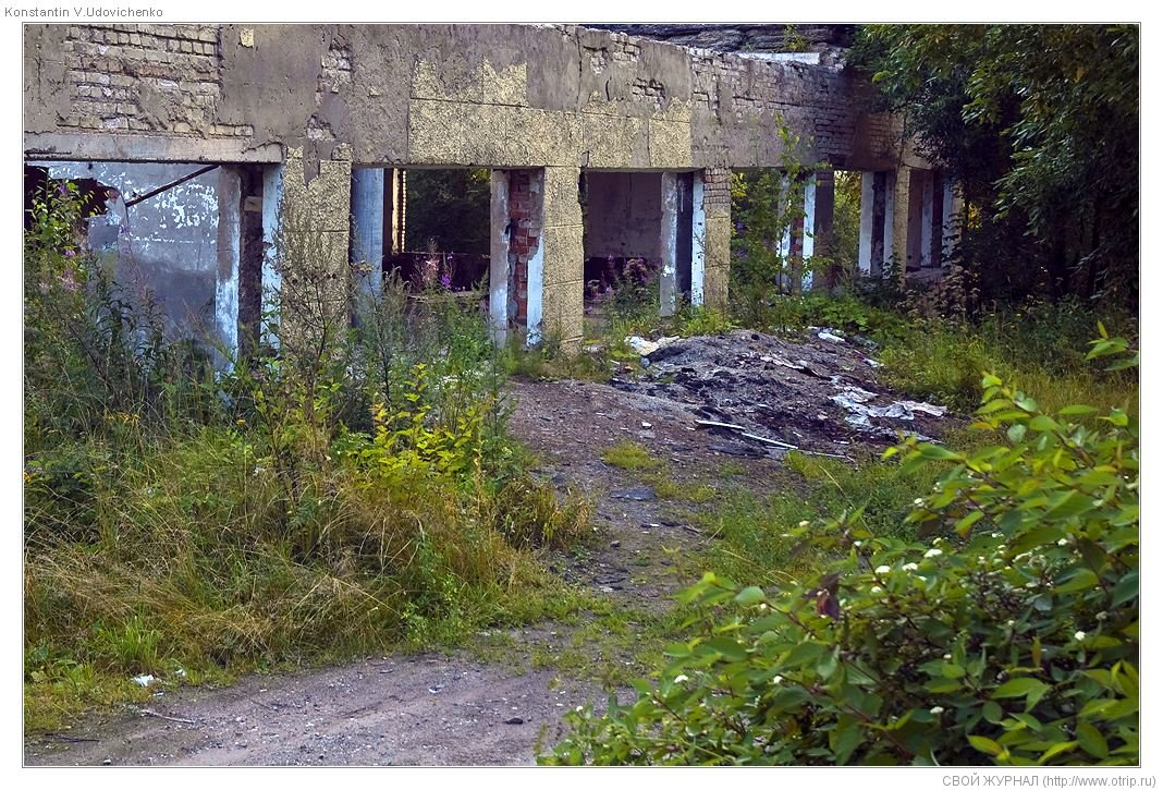 2888s_2.jpg - оз.Торбеевское-Переславль-Калязин (13.08.2009)