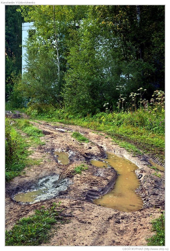 2902s_2.jpg - оз.Торбеевское-Переславль-Калязин (13.08.2009)