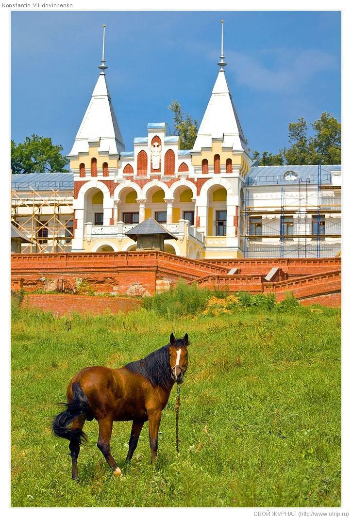 2599s_2.jpg - По Рязанской области (25-29.07.2009)