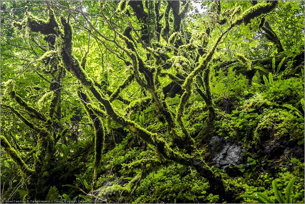 3869s.jpg - Gorge de Kakuetta (#QdF2013)