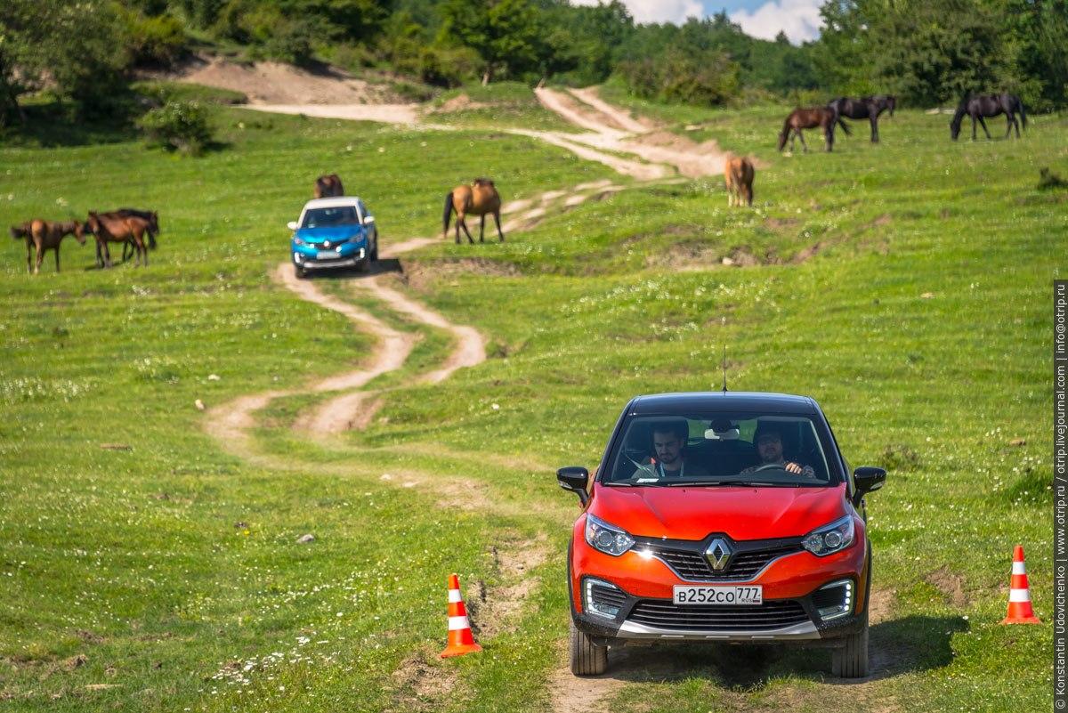 img4599s.jpg - Renault Kaptur тест-драйв в Сочи (2016-05-25_26)