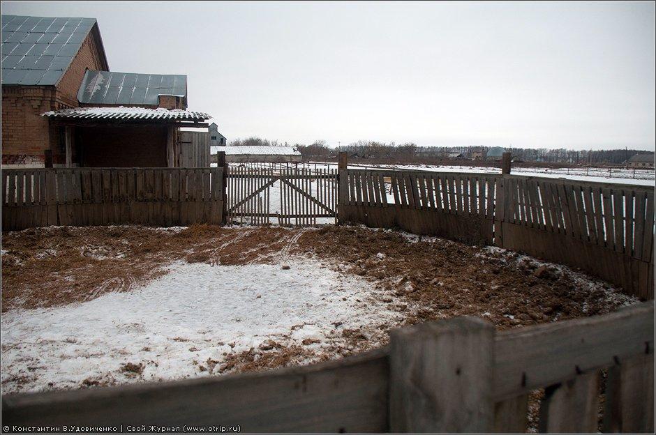 0102s_2.jpg - Рязань, вотчина Дервизов (18.12.2011)