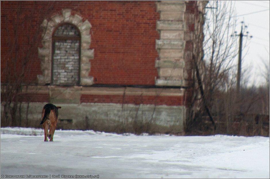 0226s_2.jpg - Рязань, вотчина Дервизов (18.12.2011)