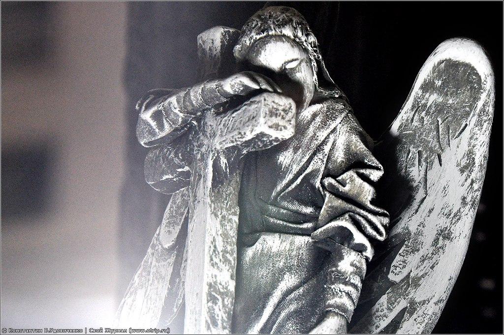 """2753s_2.jpg - Выставка """"Третье измерение"""" (03.01.2011)"""