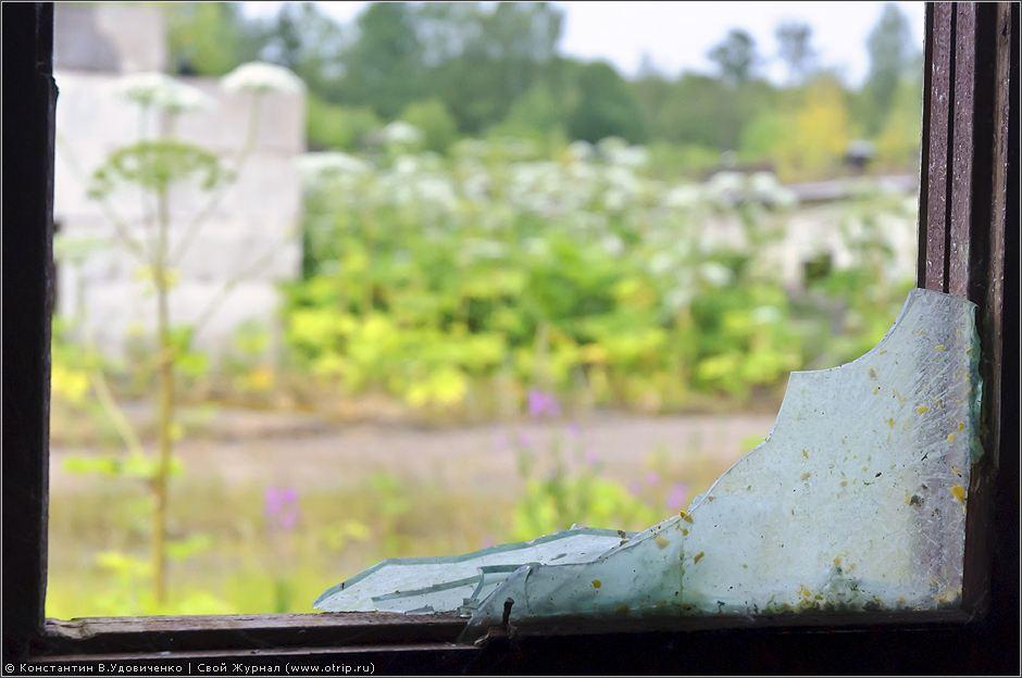 1007s_2.jpg - Хрюндель-сити (03.07.2010)