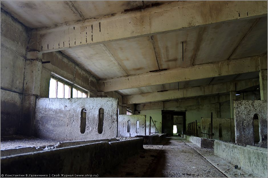 1027s_2.jpg - Хрюндель-сити (03.07.2010)