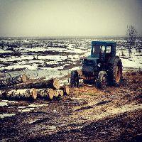 2012-12-29_11-19.jpg