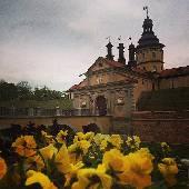 Банальненко с цветочками. :) #exifML