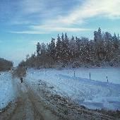 Отправил штурмана гулять... #nynordexp