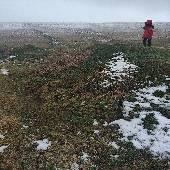 Бывалый полярник @frederick_taer не может понять, почему снег покрывает лишь малую часть земли. #lemn5642exp