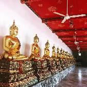 Композиция просветление Будд вентиляторами. #thaiotrip